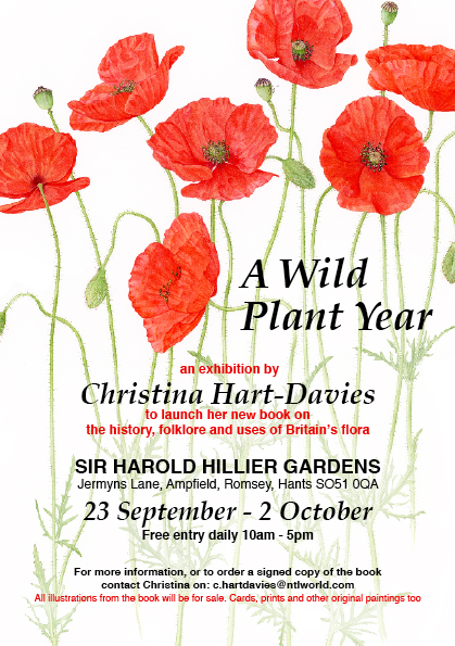 A Wild Plant Year Exhibition