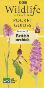 BBC Guides 1