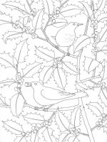Winter Wonderland; Adult colouring book, HarperCollins