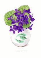 Pot Of Violets; Greetings Card, blank inside for your own message, supplied with a coloured envelope.