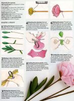 Making a paper peony